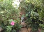 The Ruined Garden
